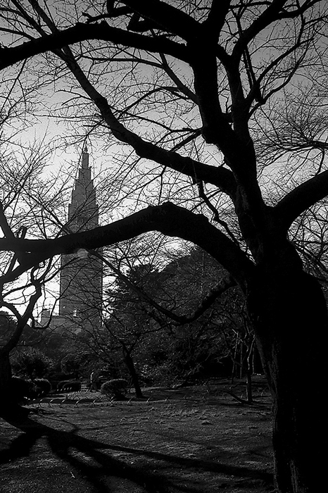 Tower Beyond The Trees (Tokyo)