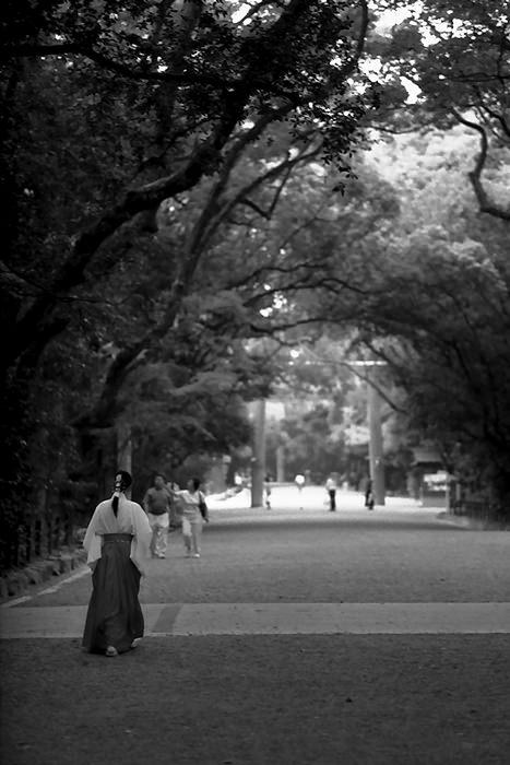Female Attendant Walking In Atsuta Jingu (Aichi)