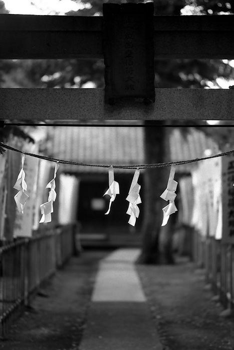 Paper hung from Torii