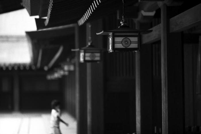 Lanterns In Meiji Jingu (Tokyo)