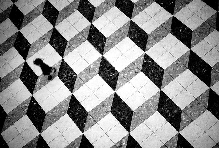 Kid In The Pattern (Tokyo)