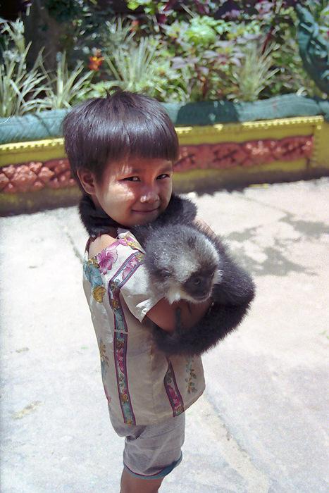 Boy and monkey