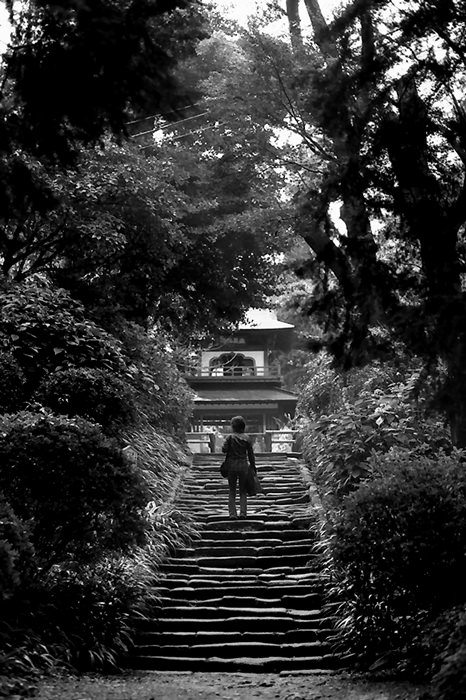 Gate On The Top Of The Old Stairway (Kanagawa)