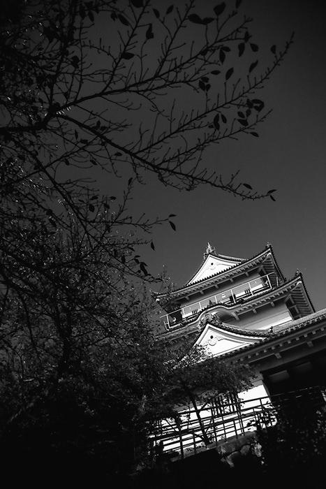tower of odawara castle
