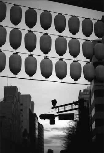Silhouttes Of Lanterns In Yaskuni Jinja @ Tokyo