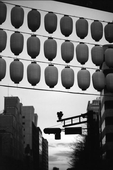 Silhouttes Of Lanterns In Yaskuni Jinja (Tokyo)