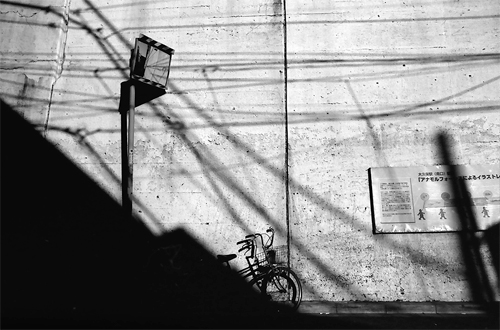 Bicycle In The Shadpw @ Tokyo