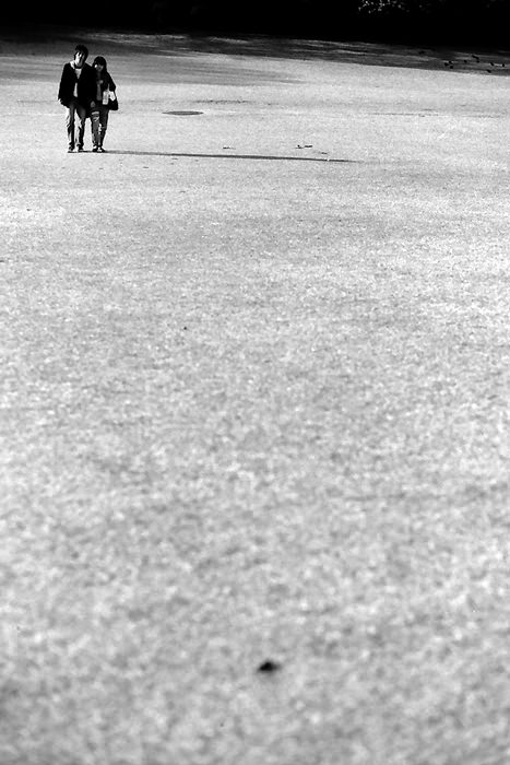 芝生の上のカップル