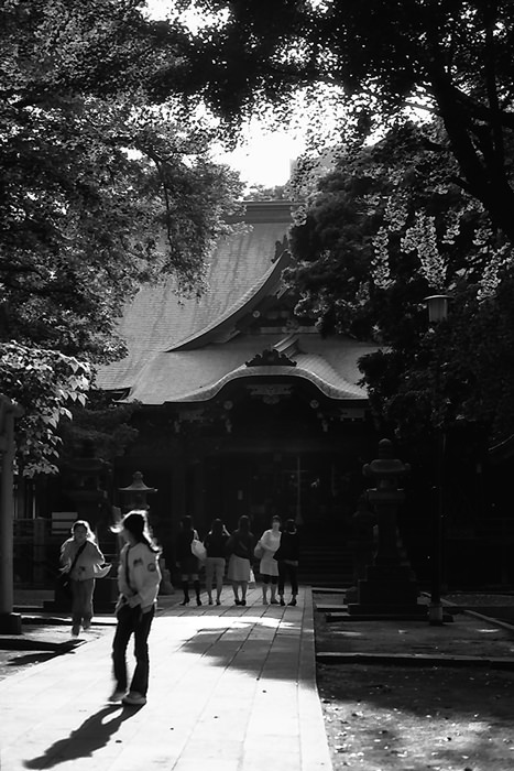 Girls In Kishomojin (Tokyo)