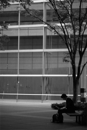 Businessman Under The Tree @ Tokyo