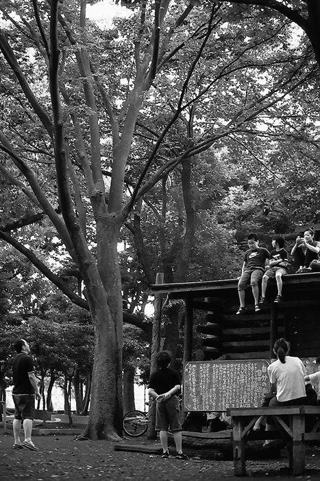 Kids On The Roof (Tokyo)