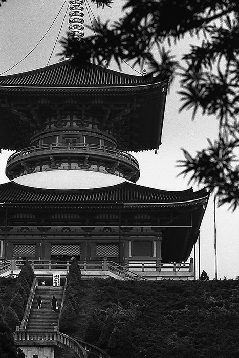 Big Pagoda In Naritasan Shinsho-Ji (Chiba)