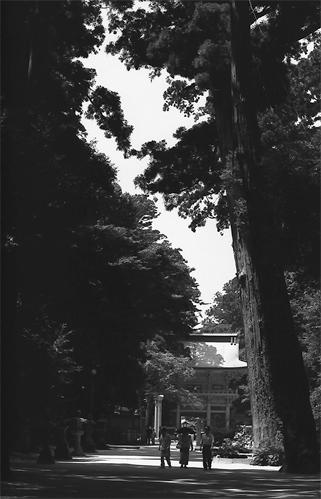 Roh-mon Gate In Kashima Jingu @ Ibaraki