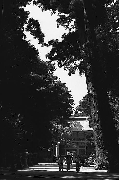 Roh-mon Gate In Kashima Jingu (Ibaraki)