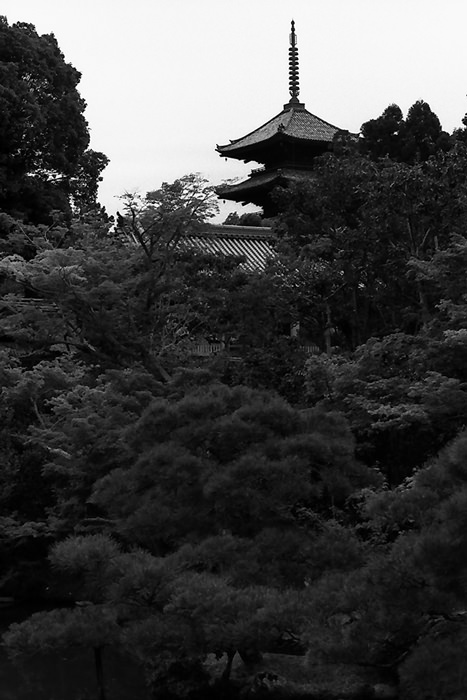 Five-storied pagoda in Ninna-Ji