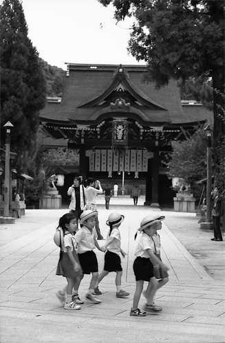 Kindergarteners In The Shrine @ Kyoto