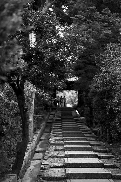 Stairs In Kodai-Ji (Kyoto)