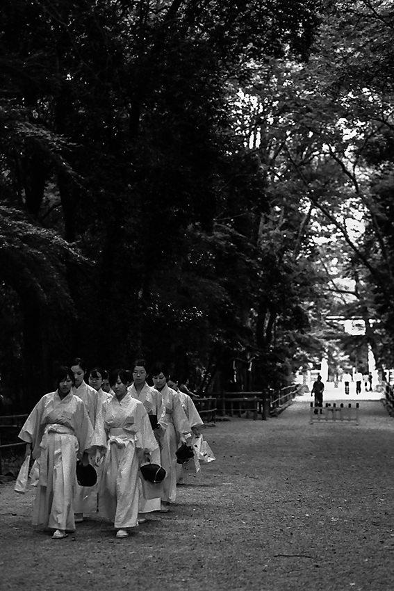 下鴨神社の巫女