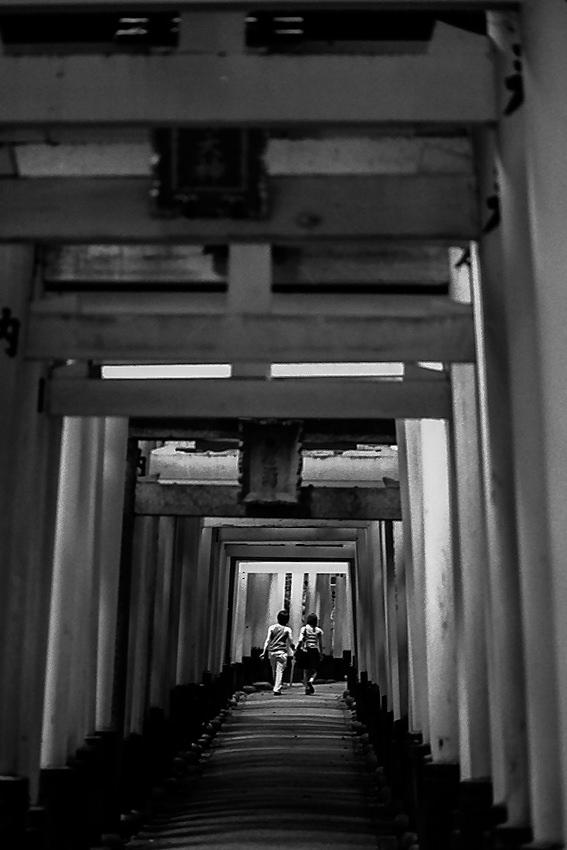 Couple passing through Torii