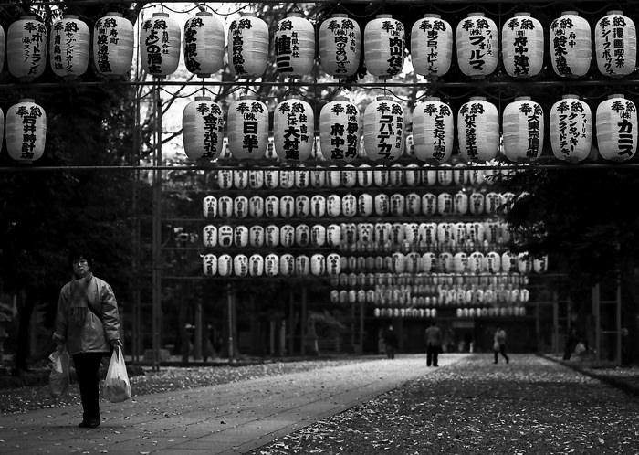 Dangling Lanterns In Okunitama Jinja (Tokyo)