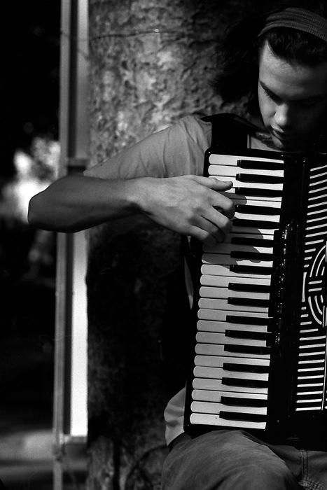 アコーディオンの奏者