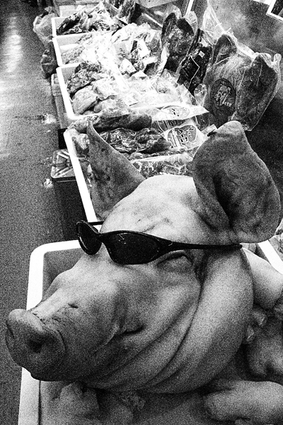 Pig Wearing Sunglasses @ Okinawa