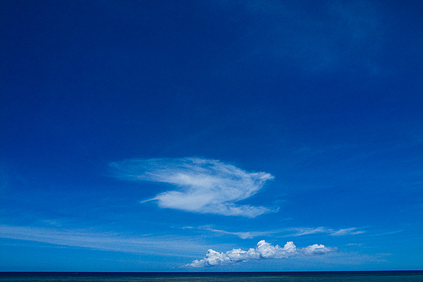 Cloud Like A Bird (Okinawa)