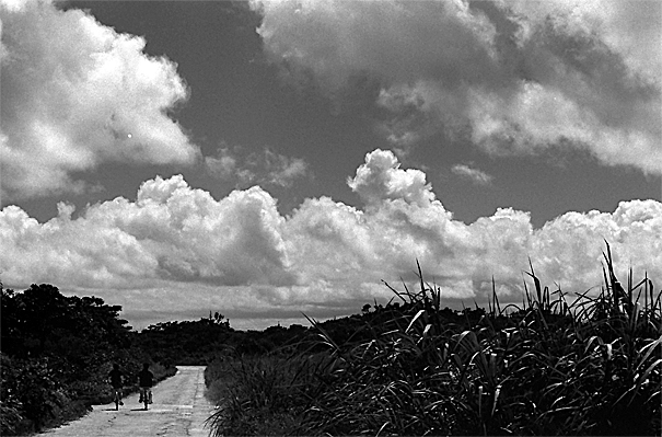 Way In The Heat Of The Summer Sun @ Okinawa