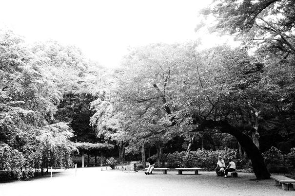People Realxing Under The Trees In Rikugien (Tokyo)