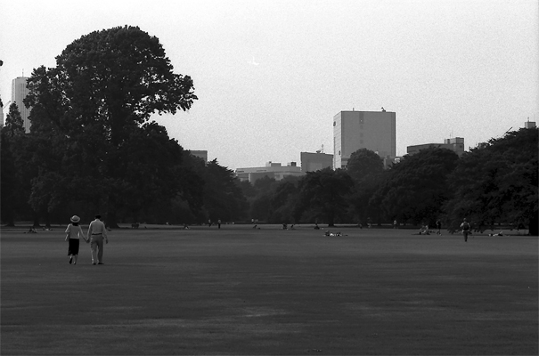 Couple Walking On The Lawn In Shinjuku Gyoen Park @ Tokyo