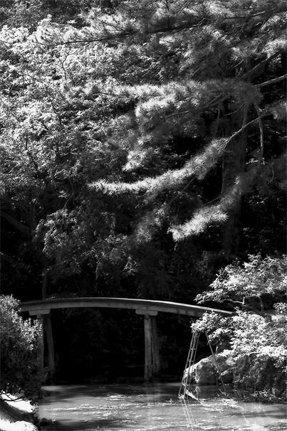 Wooden Bridge In Ritsurin Park @ Kagawa
