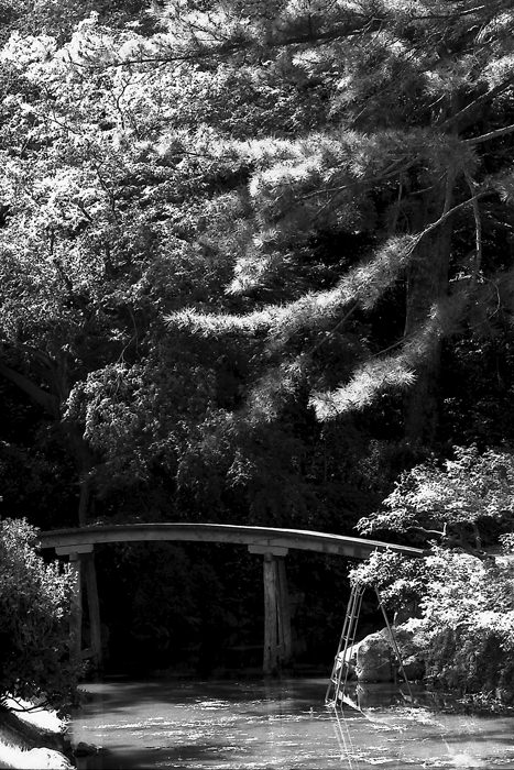 wooden bridge in Ritsurin park