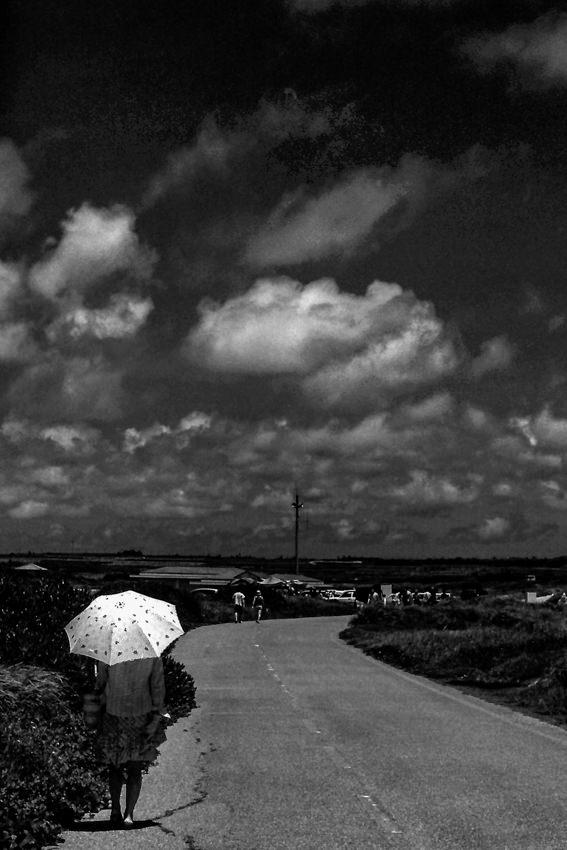 路傍の白い日傘