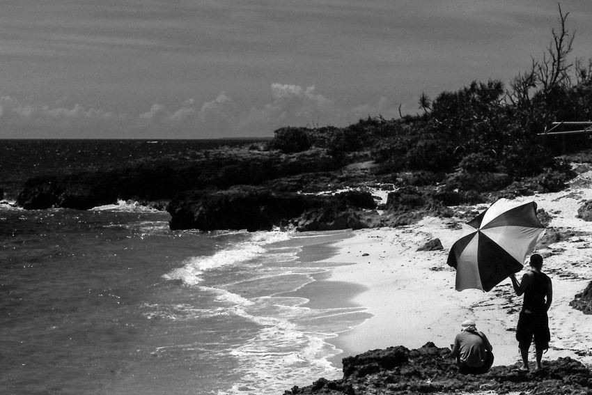 two-tone umbrella on beach