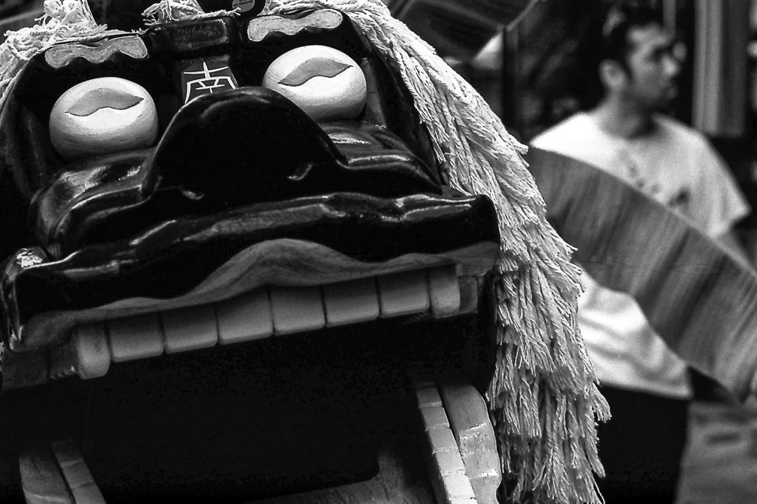 smiling mask of lion