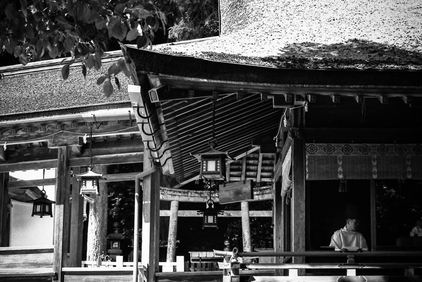 Shinto priest under thatched roof
