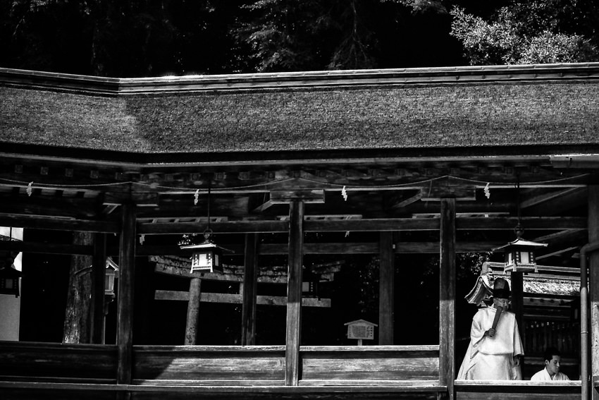Old and young Shinto priest