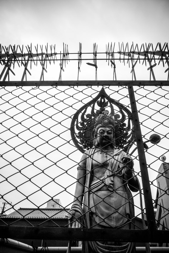 Statue on other side of woven wires