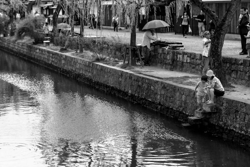 倉敷川の水辺にいた親子