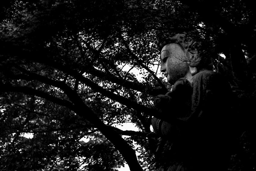 高幡不動の仏像