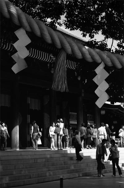 Shimenawa And Shide In Meiji Jingu (Tokyo)