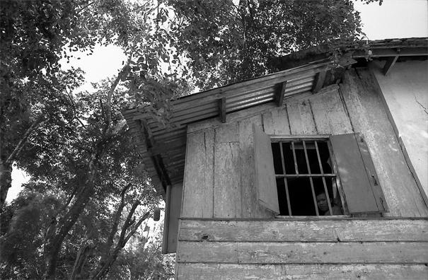 Window Of A Vihara (Laos)