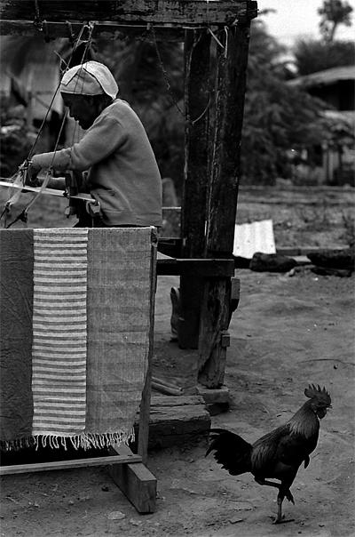 Hen And Weaver @ Laos