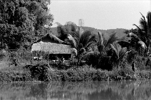 Thatched house near pond