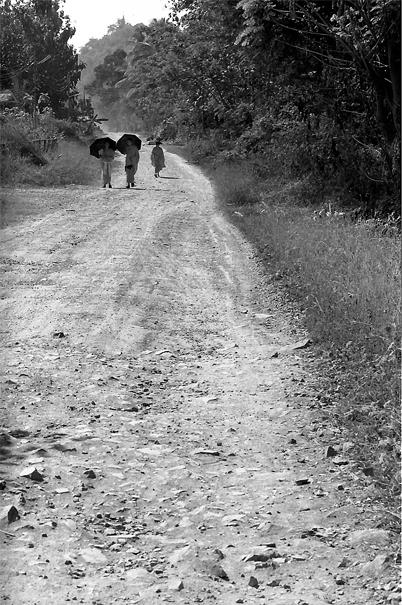 Three Monks Walking The Dirt Road @ Laos