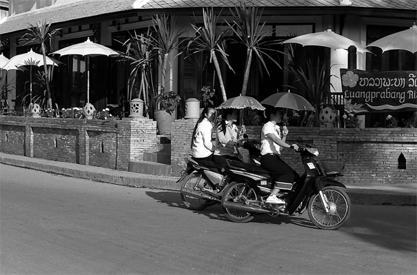 Motorbikes Running With Umbrellas (Laos)