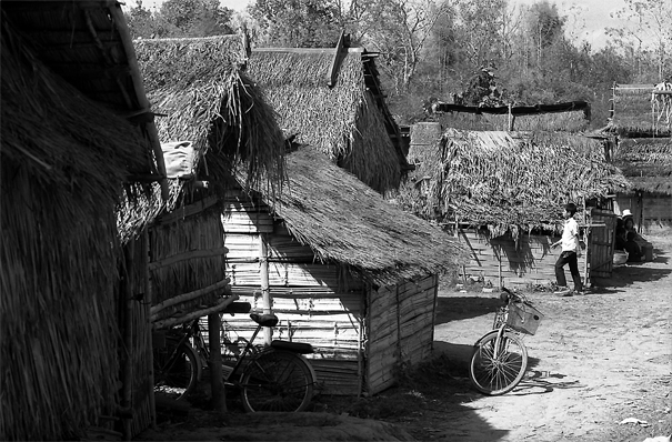 Young man walking between thatched huts