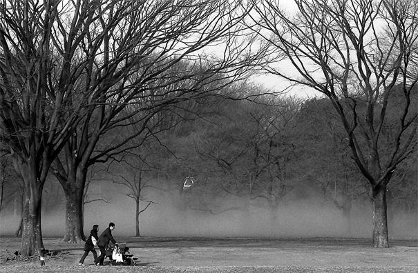 代々木公園でベビーカーを押していた夫婦