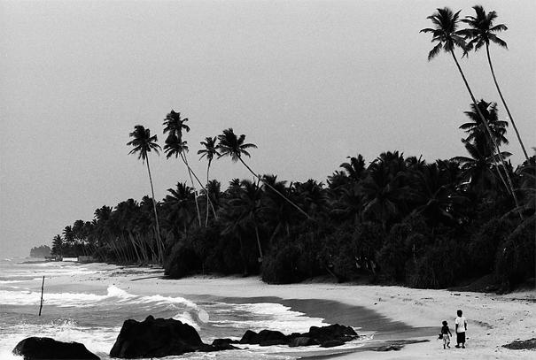 砂浜を散歩する親子