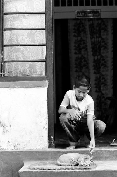 Boy Meddling With A Cat @ Sri Lanka